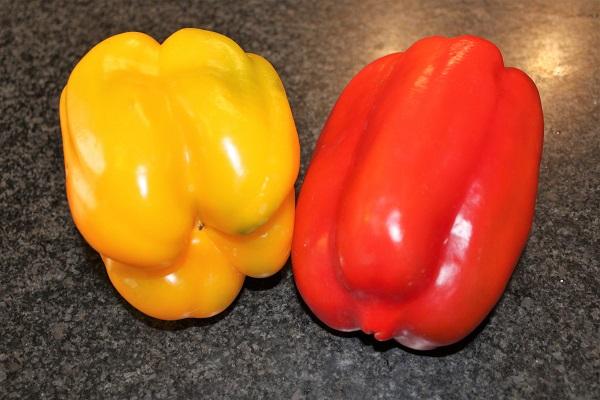 orecchiette alla crema di peperoni